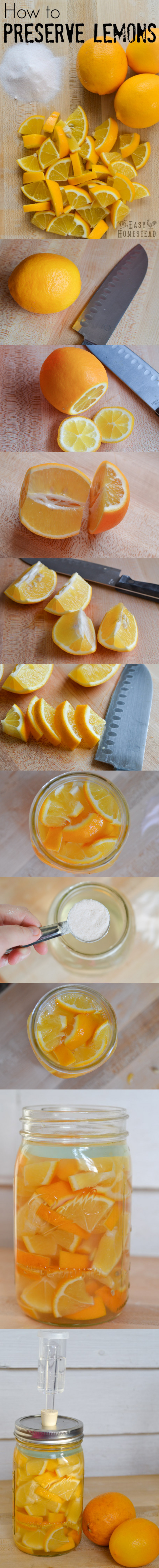 How to Preserve Lemons (Fermented Lemons | The Easy Homestead