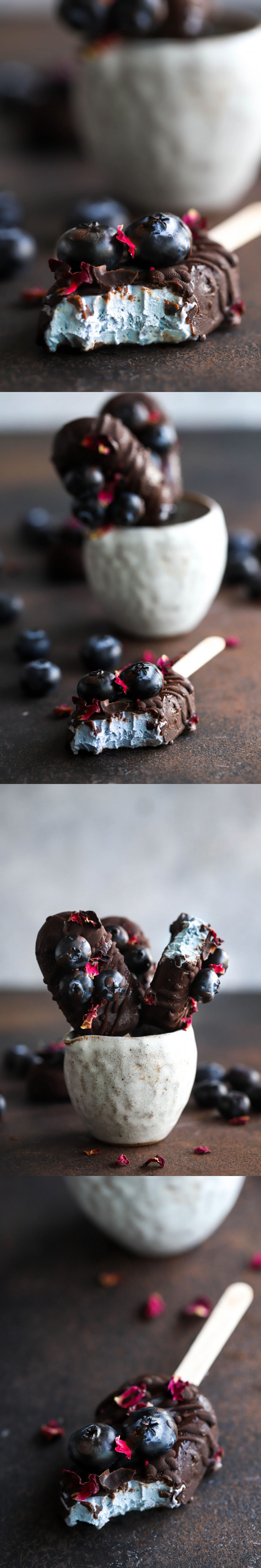 Vegan Blueberry Ice Cream Pops