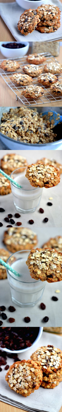 Apple & Raisin Oaty Breakfast Cookies - Coconut and Berries