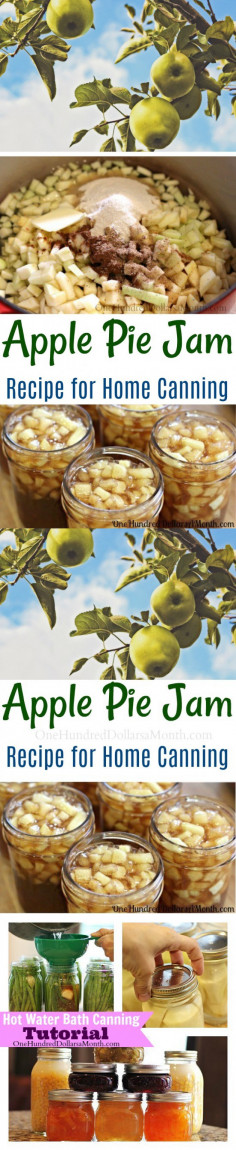 Canning 101 - Apple Pie Jam Recipe - One Hundred Dollars a Month