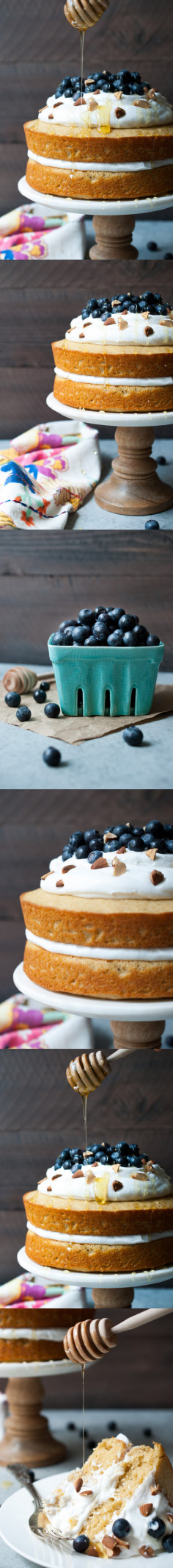Lemon Blueberry Olive Oil Cake w/ Coconut Whipped Cream | Life is but a Dish